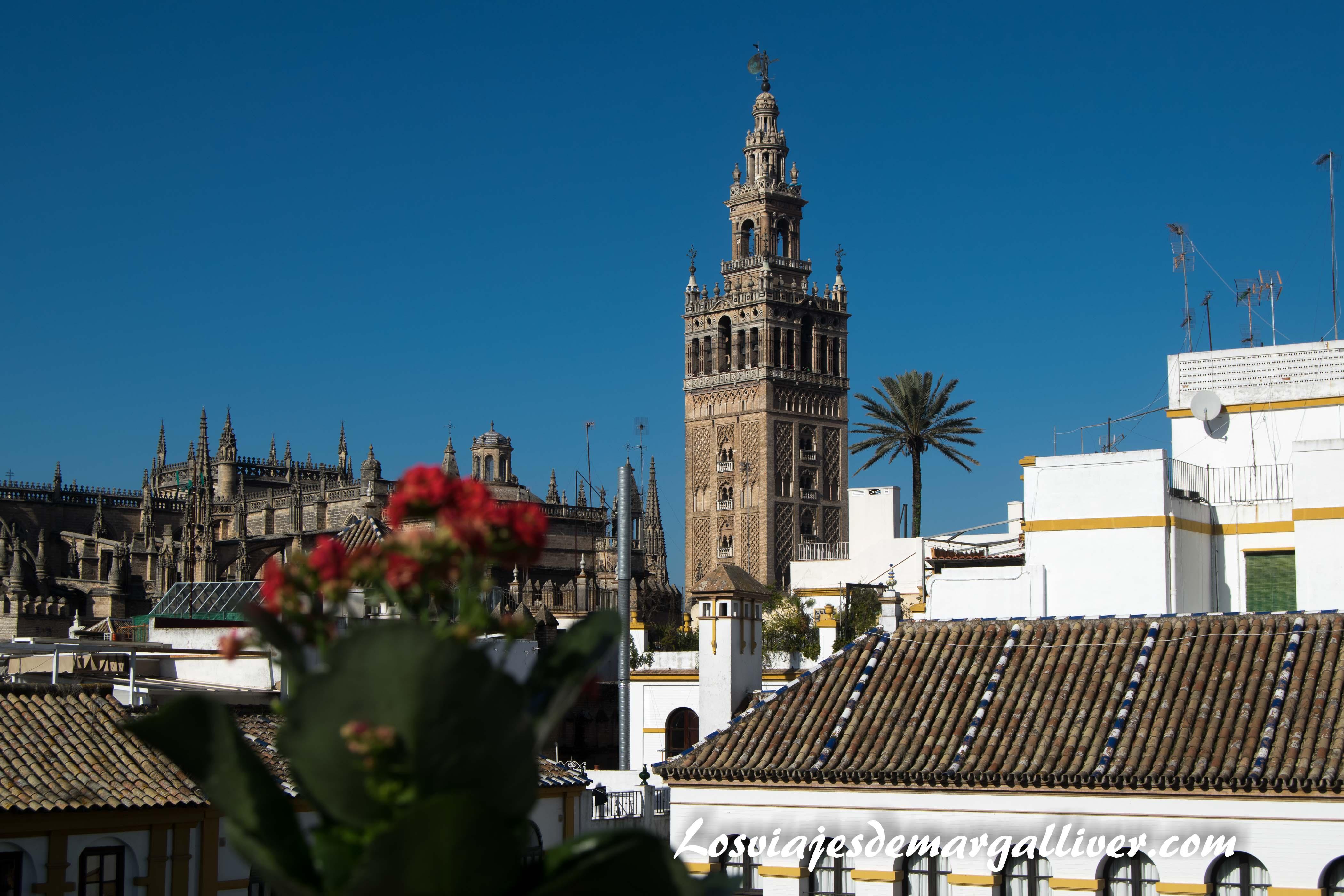 vistas de la giralda desde la casa-museo Amalio, San Valentín - Los viajes de Margalliver
